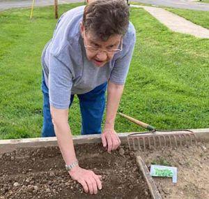 Sr Janet prepares soil in garden