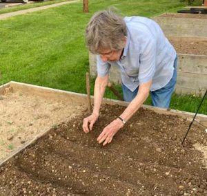 Sister Martha plants.